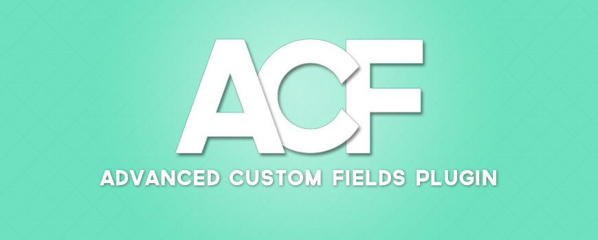 Advanced Custom Fields WordPress Plugin